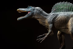 Spinosaurus toy on dark Stock Images