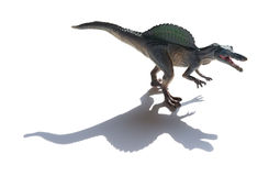 Spinosaurus toy with shadow. On a white background Royalty Free Stock Photo