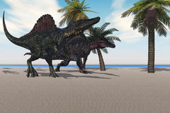 Spinosaurus Walking Royalty Free Stock Image
