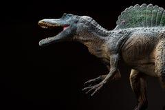 Spinosaurus zabawka na zmroku Obrazy Stock