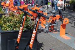 Spinowa hulajnoga, przejażdżka dzieli elektryczną hulajnogę w śródmieściu zdjęcie royalty free