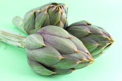 Spiny artichokes on green background  close-up Stock Photography