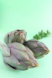 Spiny artichokes with parsley on green background Stock Photos