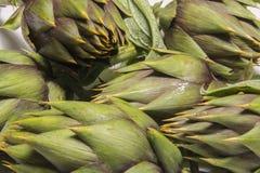 Spiny artichokes of Sardegna. Healthy Italian organic agriculture royalty free stock photo