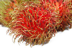 Spiny fruits Royalty Free Stock Photography