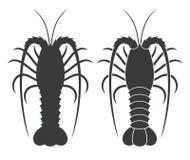 Free Spiny Lobster Stock Photo - 102219310