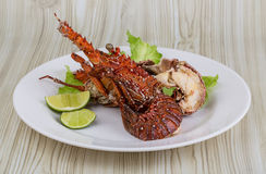 Spiny lobster Stock Images