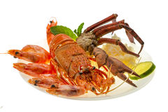 Spiny lobster, shrimps, crab legs  and rice Royalty Free Stock Photo