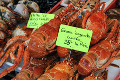 Spiny lobsters. And seafood at the Trouville market in Normandy Stock Photo