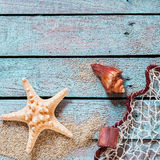 Spiny starfish and conch with fishing net Stock Images
