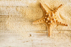 Spiny starfish and sea sand on wooden boards Stock Image