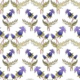 Thistle spike flower hand drawn seamless pattern vector illustration