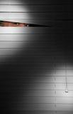 spion Arkivbilder