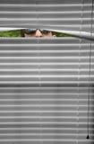 Spion Lizenzfreies Stockbild