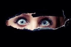 Spionage der blauen Augen der Frauen Stockbilder