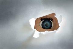 Spionauge Stockfotografie