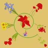 Spiraal met bloemen royalty-vrije illustratie