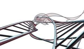 Spiraalvormige Geneticabundels Stock Afbeelding