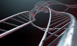 Spiraalvormige Geneticabundels Stock Foto