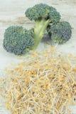 Spirad broccolifrö och ny grönsak Sund livsstil och n?ring fotografering för bildbyråer