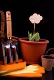 Spirade tulpan, korg, krattar och torvkruka med jord för plan Royaltyfri Bild