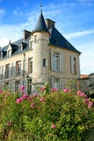 Spiraea Roses Pink Flowers and Old French Castle Stock Image