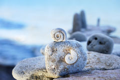 Spiral. The structure of the spiral in some textures stones stock photos