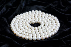 Spiral arranged natural pearl necklace on a black velvet Royalty Free Stock Image
