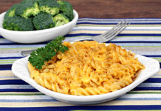 Spiral Baked Macaroni and Cheese Royalty Free Stock Image