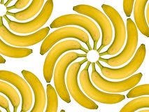 Spiral of bananas. Bananas in multiple view on white background Royalty Free Stock Image