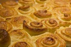 Spiral cinnamon buns on a baking sheet. Stock Image