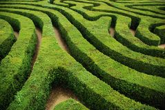 A spiral confusing hedgerow spiral maze Royalty Free Stock Image
