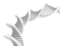 Spiral DNA isolated royalty free stock photo