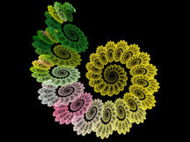 Spiral för Fractalabstrakt begreppblomma på svart bakgrund royaltyfria bilder