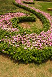 Spiral flower garden Royalty Free Stock Photo