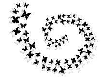 Spiral of flying butterflies Royalty Free Stock Image