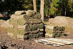Spiral of fresh rolled grass turf. Spiral  stacked on pallets Royalty Free Stock Images