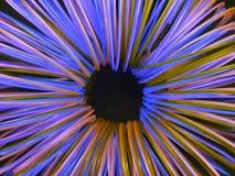 spiral i fluorescerande färger i en cirkel, texturerad bakgrund Royaltyfria Foton