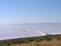 Spiral Jetty swirls in the water Royalty Free Stock Photo