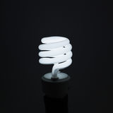 Spiral Light bulb Stock Images
