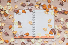 Spiral notebook with maple leaves on wood background Stock Image