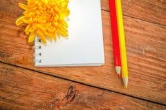 Spiral notepad, röda och gula blyertspennor och krysantemumblomma Fotografering för Bildbyråer