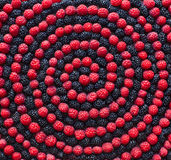 Spiral Of Berry. Raspberry And Mulberry Stock Photos