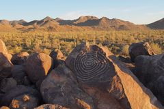 Spiral petroglyph på signalkullen i Saguaronationalparken, Arizona arkivfoto