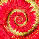 Spiral red gerbera flower. Droste effect Stock Image