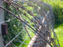 Spiral of sharp rusty barbed wire Royalty Free Stock Images