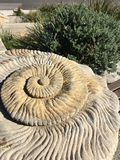Spiral shell concrete seaside sculpture Stock Photos