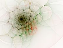 Spiral Splendor against White Stock Photography