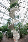 Spiral staircase in arboretum Royalty Free Stock Image