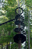Spiral Staircase on Redwood Tree. Skybridge and spiral staircase along zipline inside redwood forest of sonoma county california Royalty Free Stock Photography